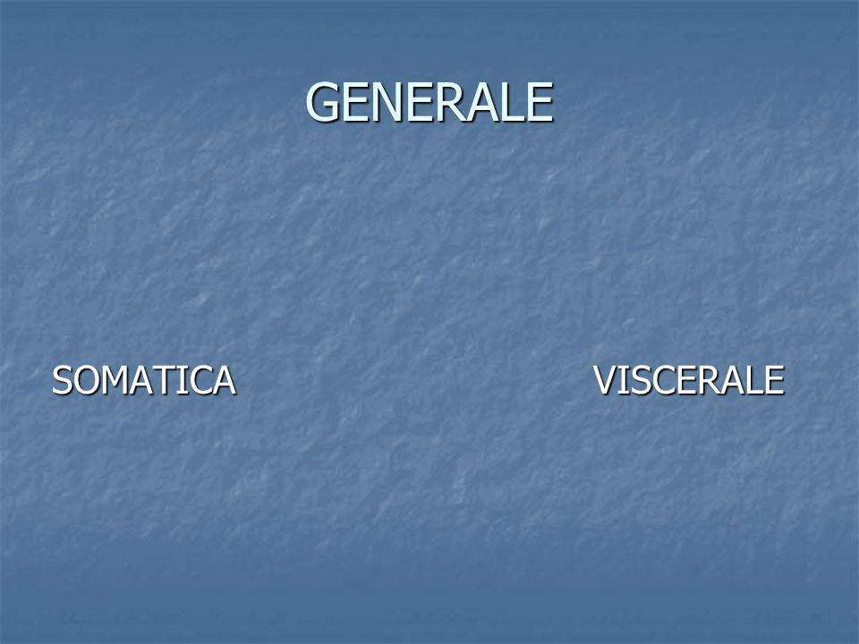 GENERALE SOMATICA VISCERALE