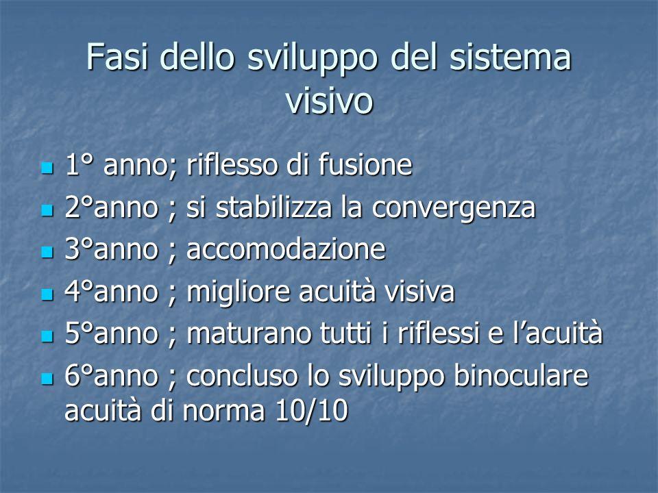 Fasi dello sviluppo del sistema visivo