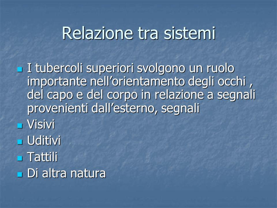 Relazione tra sistemi