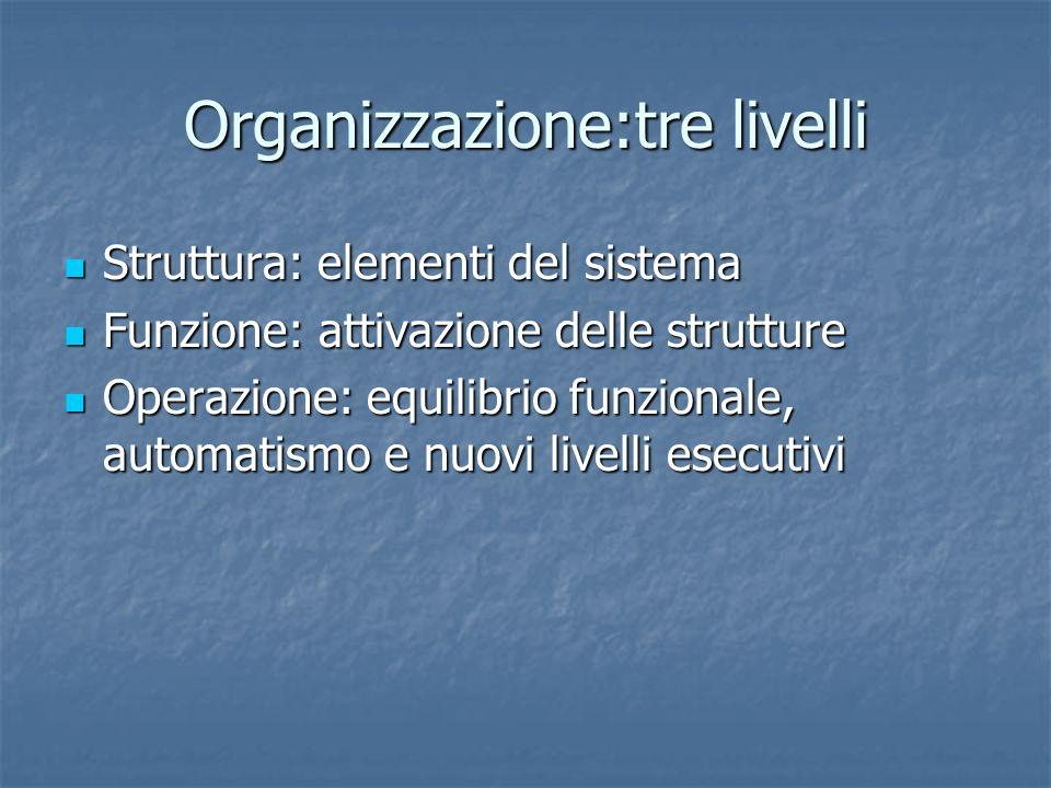Organizzazione:tre livelli