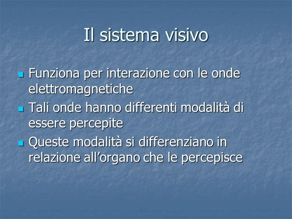 Il sistema visivo Funziona per interazione con le onde elettromagnetiche. Tali onde hanno differenti modalità di essere percepite.