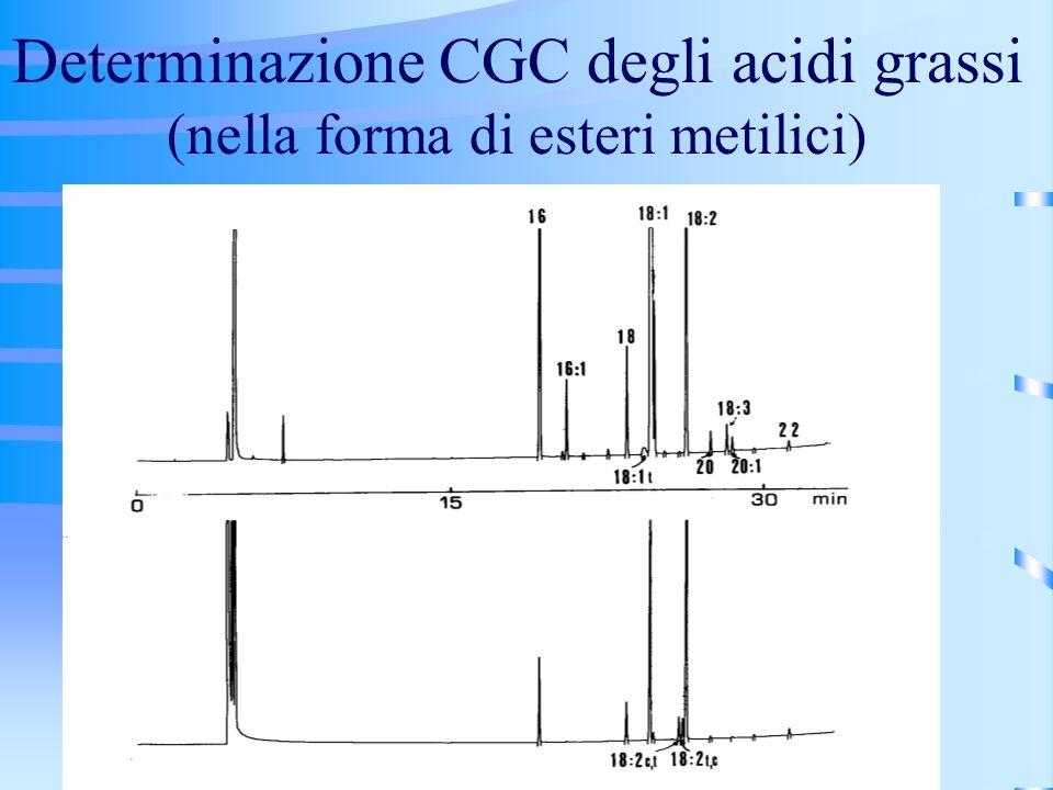 Determinazione CGC degli acidi grassi (nella forma di esteri metilici)