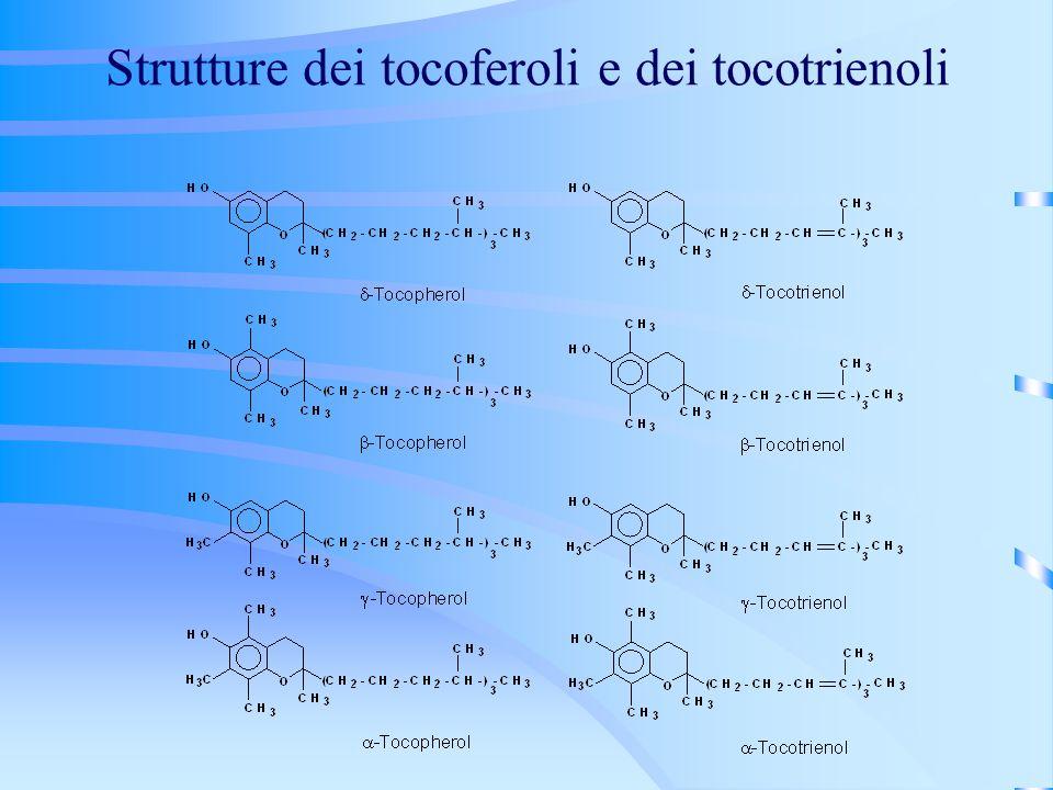Strutture dei tocoferoli e dei tocotrienoli