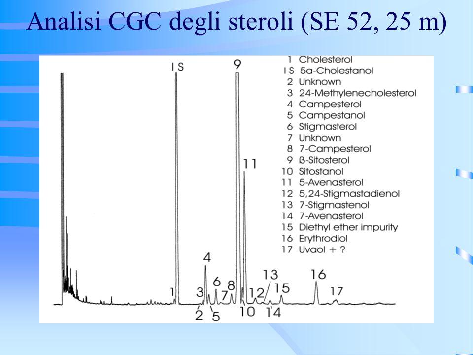 Analisi CGC degli steroli (SE 52, 25 m)