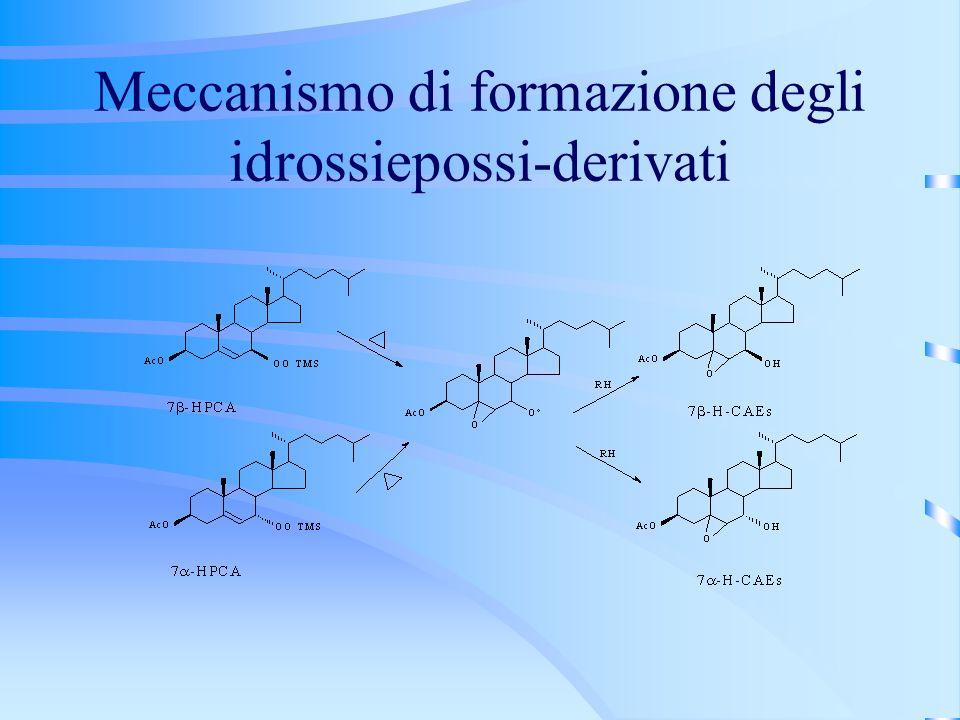 Meccanismo di formazione degli idrossiepossi-derivati