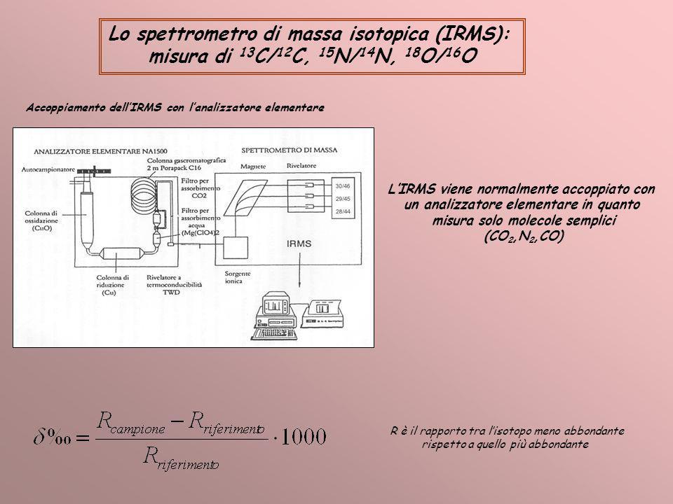Lo spettrometro di massa isotopica (IRMS):