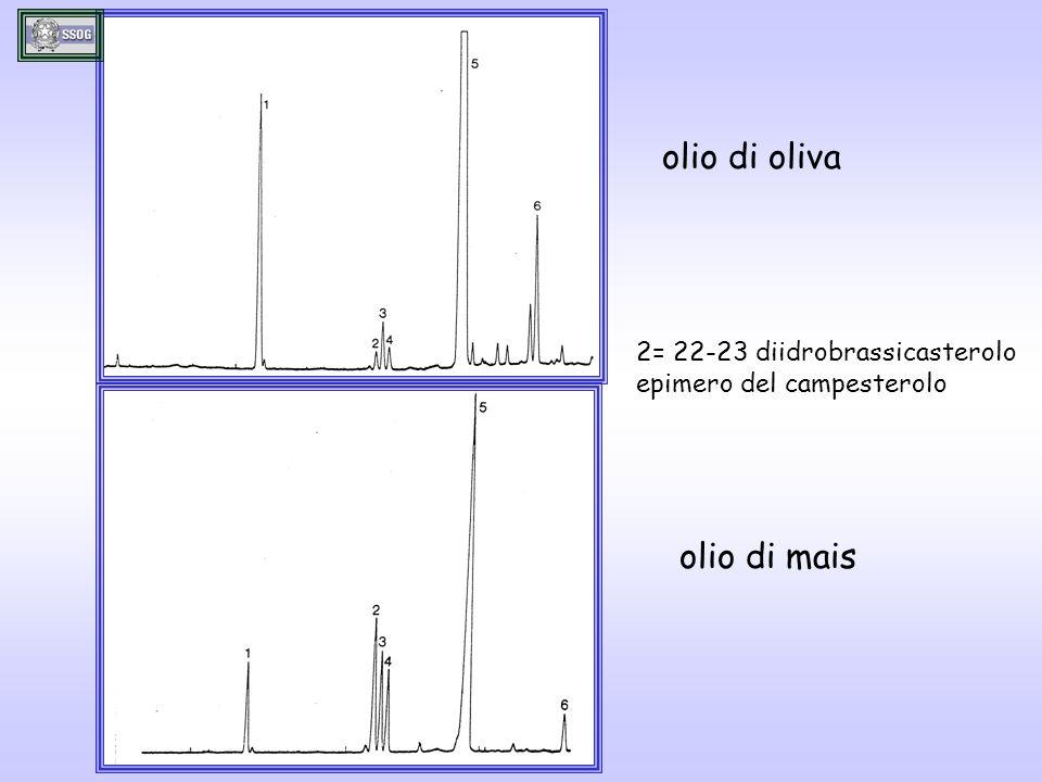 olio di oliva olio di mais