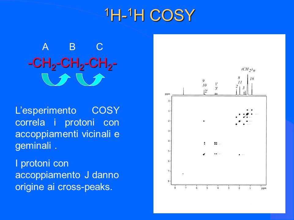1H-1H COSY -CH2-CH2-CH2- A B C