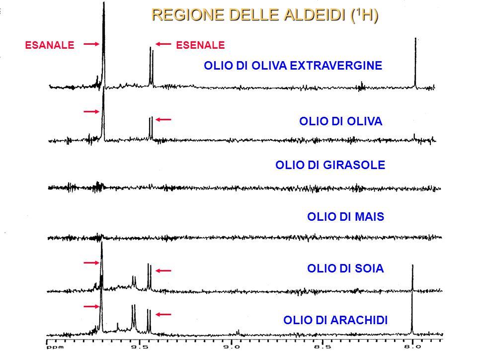 REGIONE DELLE ALDEIDI (1H)