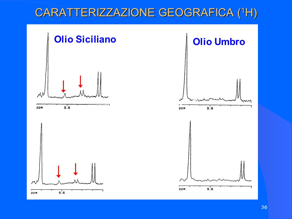 CARATTERIZZAZIONE GEOGRAFICA (1H)