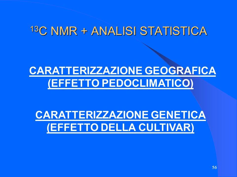 13C NMR + ANALISI STATISTICA