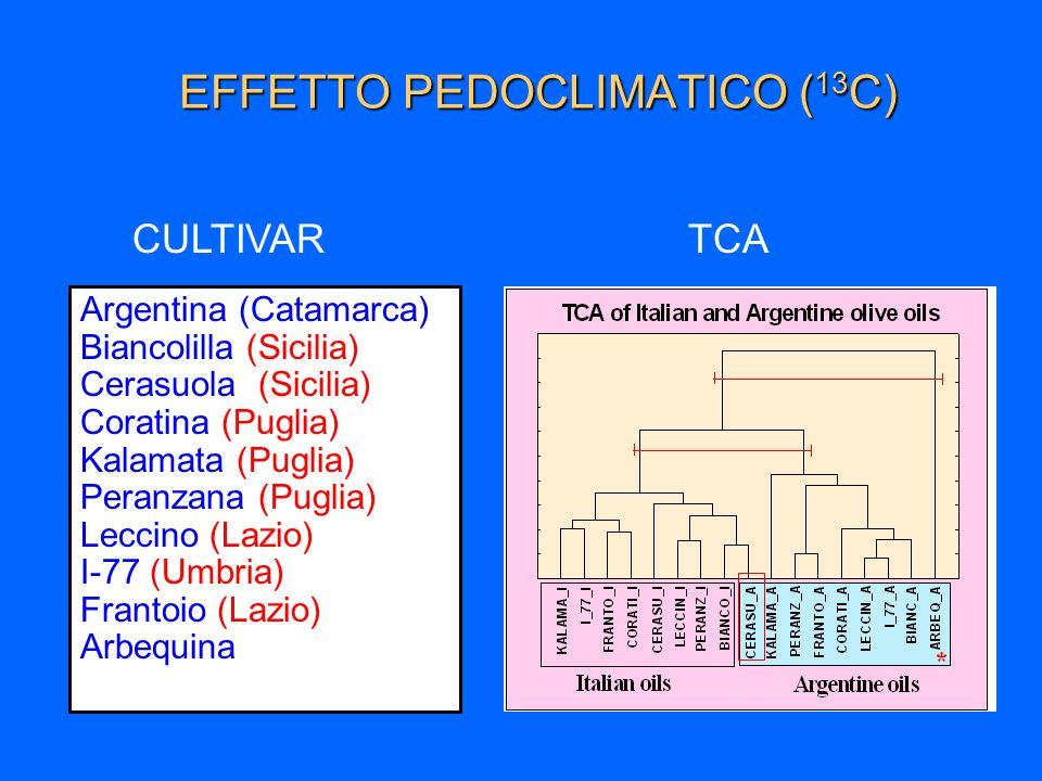 EFFETTO PEDOCLIMATICO (13C)