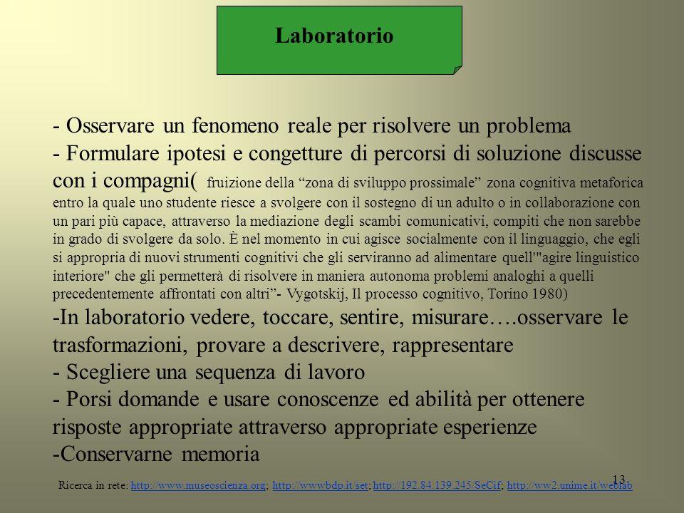 Laboratorio - Osservare un fenomeno reale per risolvere un problema.