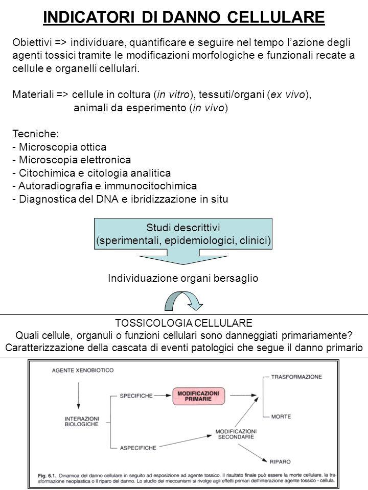 INDICATORI DI DANNO CELLULARE