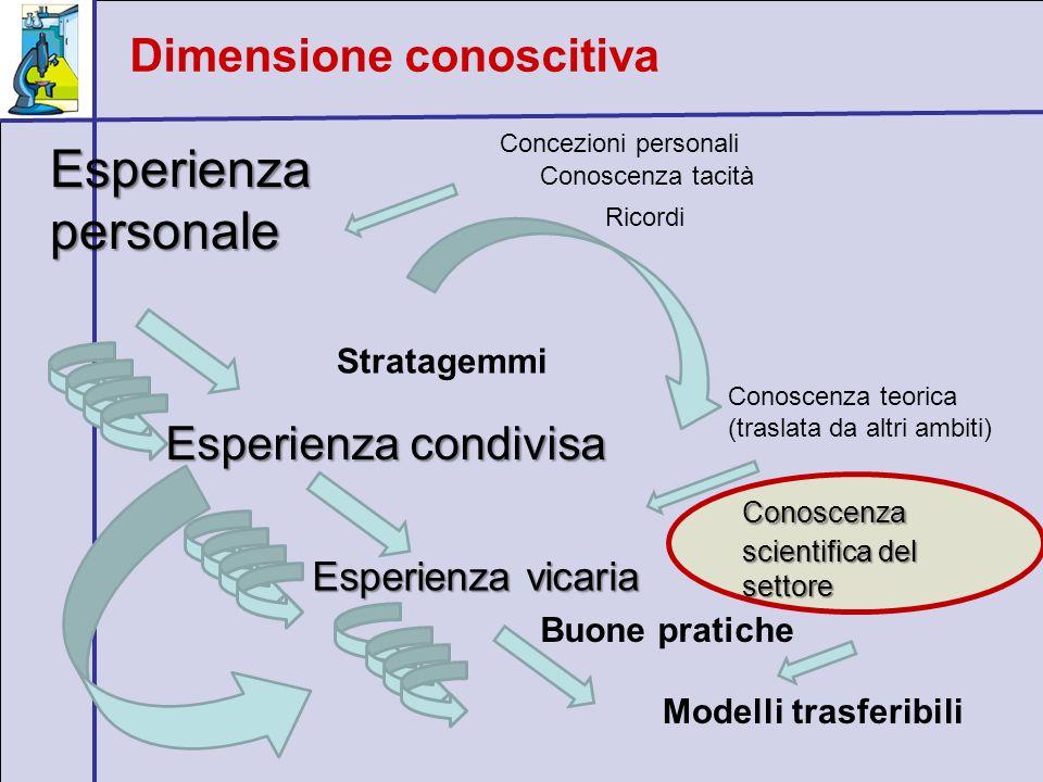 Dimensione conoscitiva