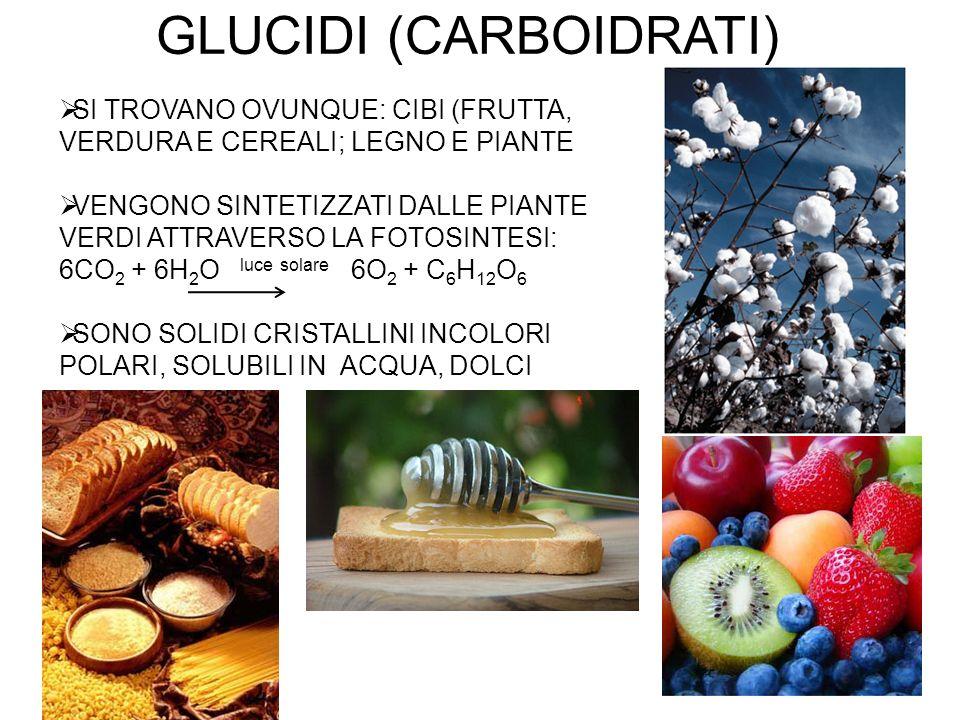 GLUCIDI (CARBOIDRATI)