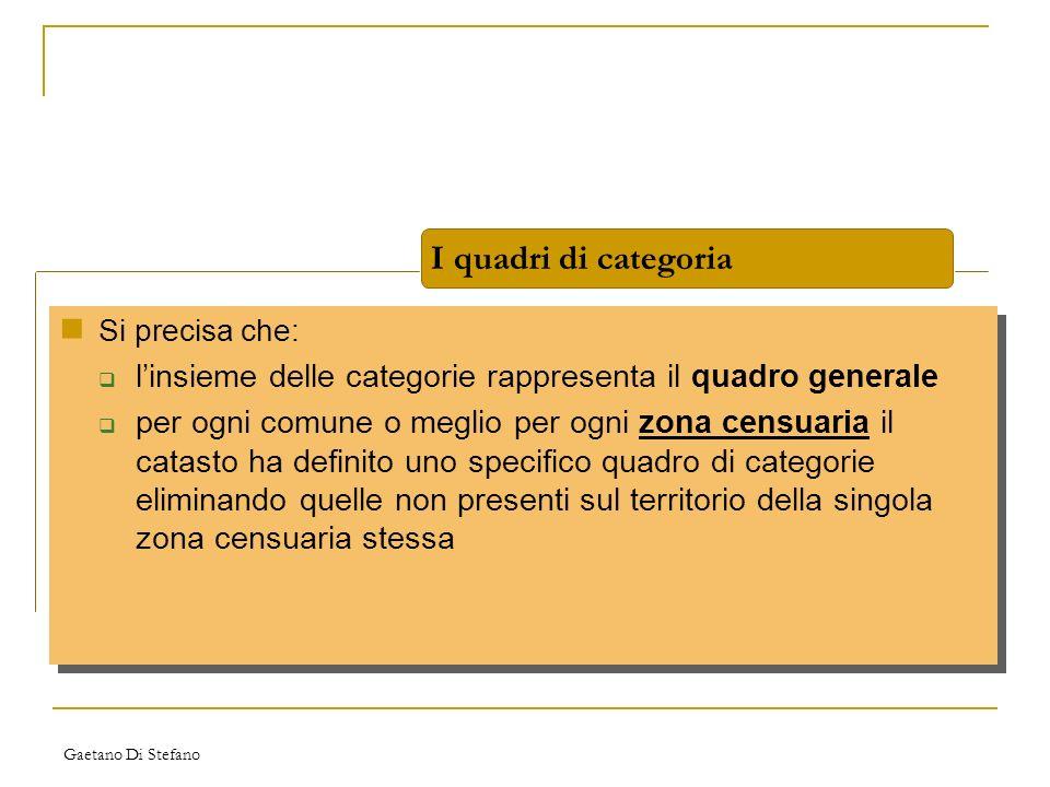 I quadri di categoria Si precisa che: l'insieme delle categorie rappresenta il quadro generale.