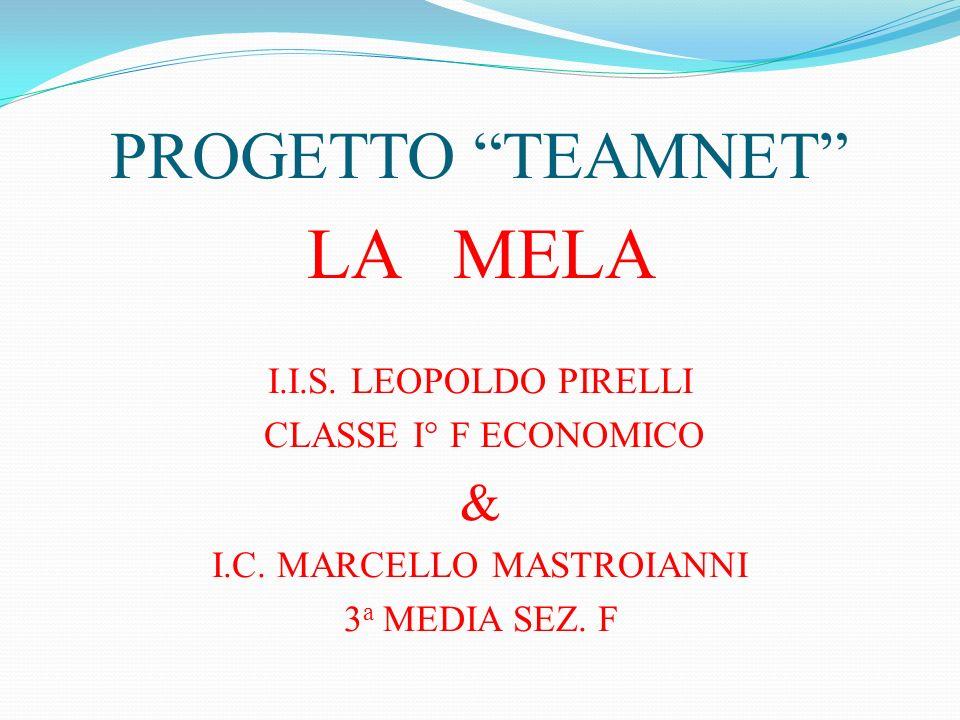 I.C. MARCELLO MASTROIANNI