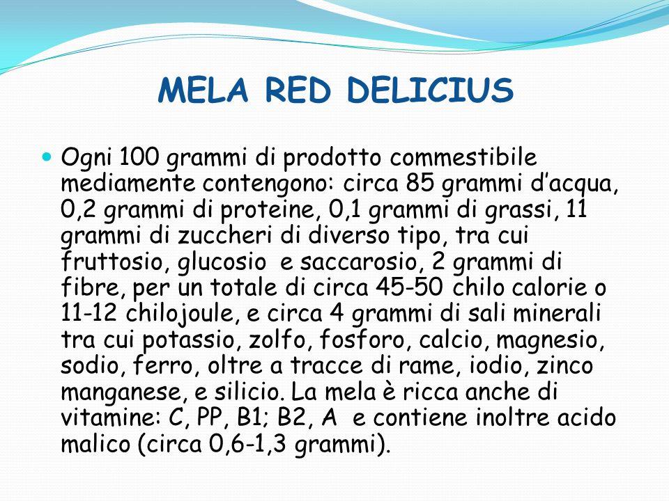 MELA RED DELICIUS