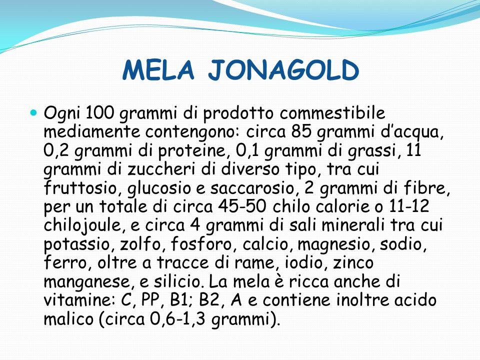 MELA JONAGOLD