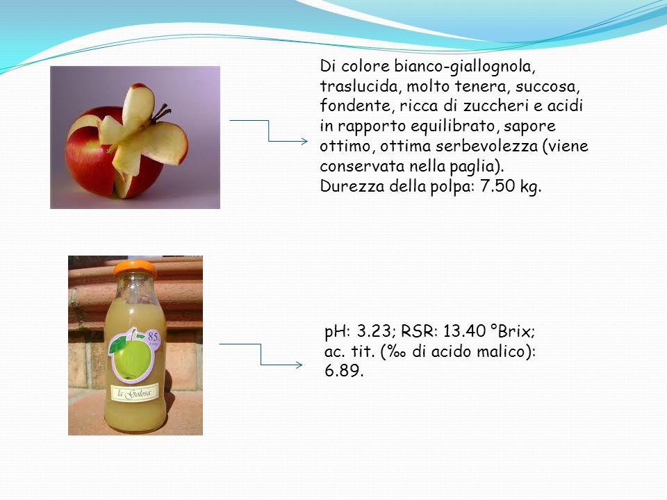 Di colore bianco-giallognola, traslucida, molto tenera, succosa, fondente, ricca di zuccheri e acidi in rapporto equilibrato, sapore ottimo, ottima serbevolezza (viene conservata nella paglia).