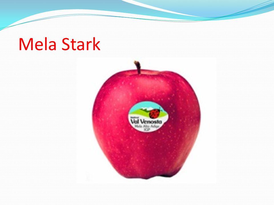 Mela Stark