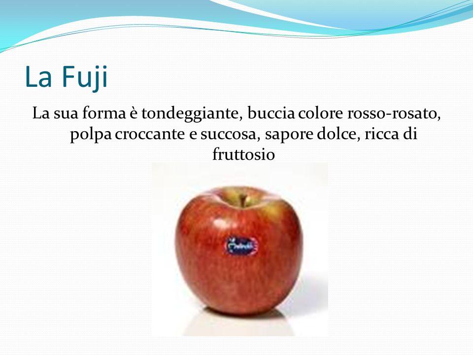 La Fuji La sua forma è tondeggiante, buccia colore rosso-rosato, polpa croccante e succosa, sapore dolce, ricca di fruttosio.