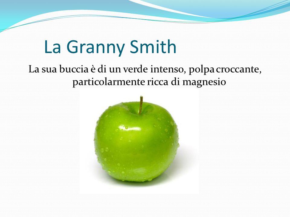 La Granny Smith La sua buccia è di un verde intenso, polpa croccante, particolarmente ricca di magnesio.