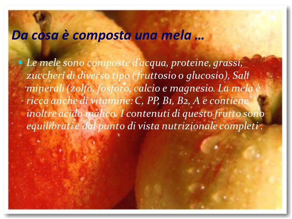 Da cosa è composta una mela …