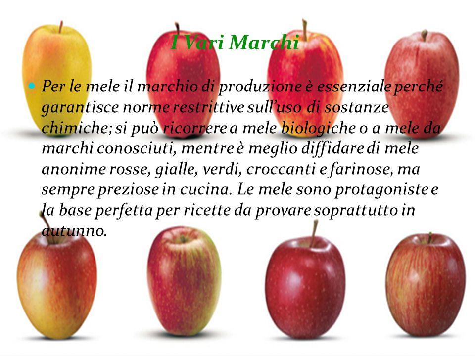 I Vari Marchi