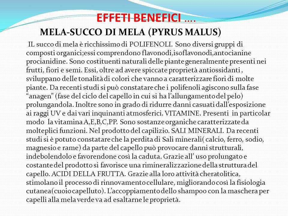 EFFETI BENEFICI …. MELA-SUCCO DI MELA (PYRUS MALUS)
