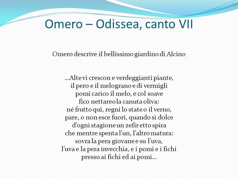 Omero – Odissea, canto VII