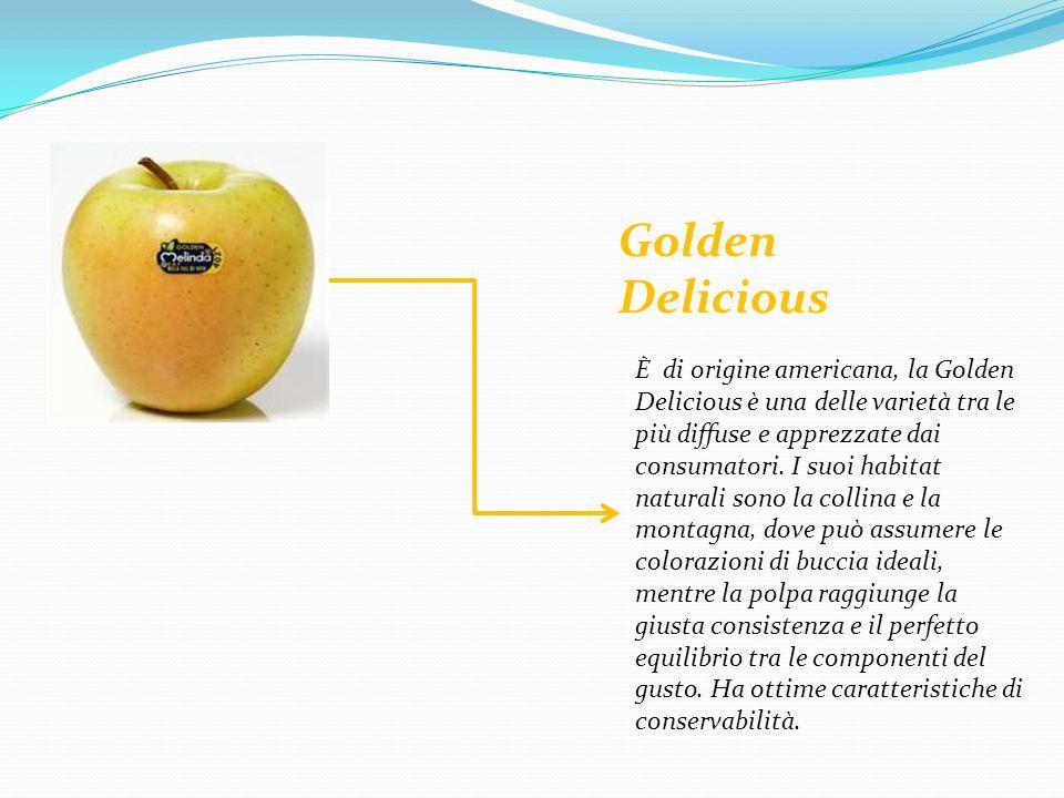 Golden Delicious