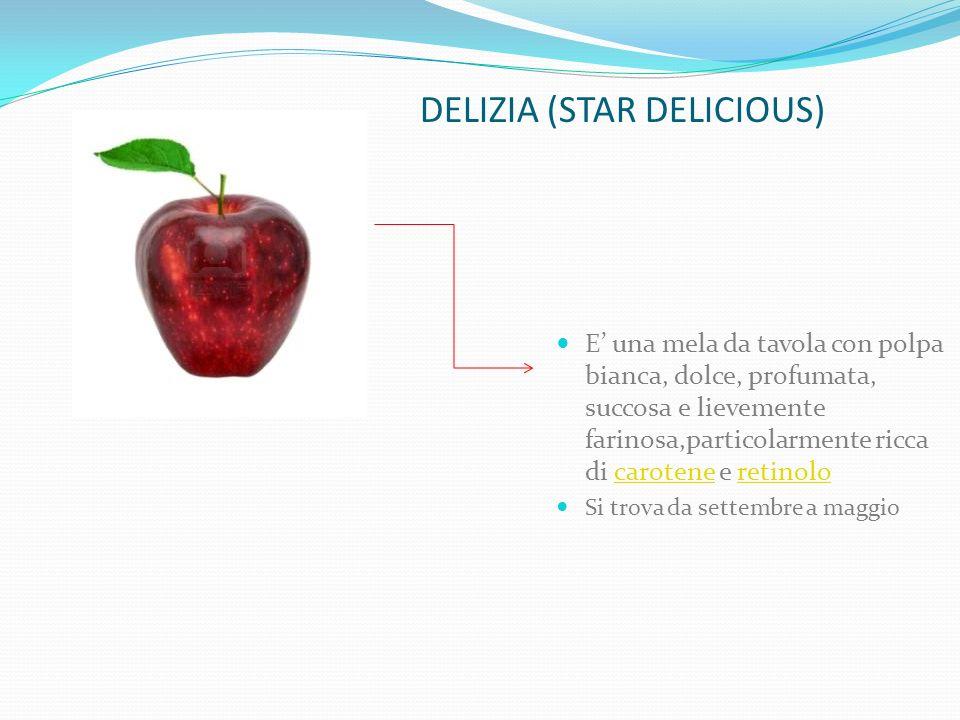 DELIZIA (STAR DELICIOUS)