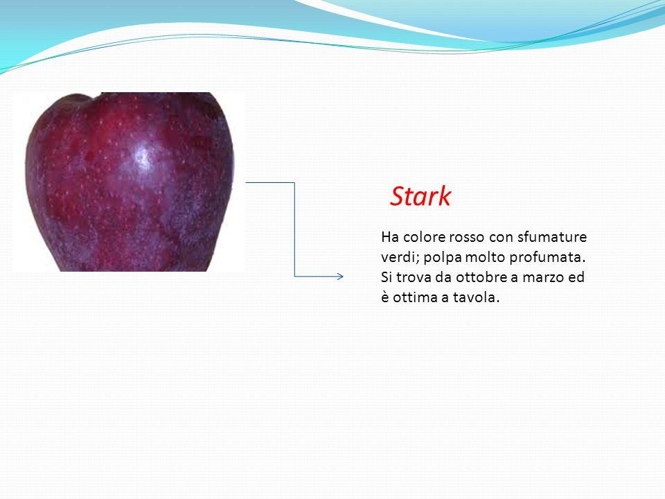 Stark Ha colore rosso con sfumature verdi; polpa molto profumata.