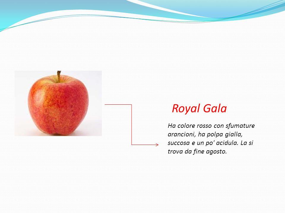 Royal Gala Ha colore rosso con sfumature arancioni, ha polpa gialla, succosa e un po acidula.