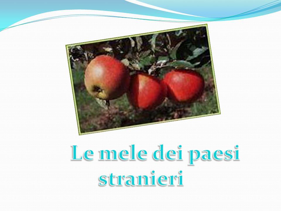 Le mele dei paesi stranieri