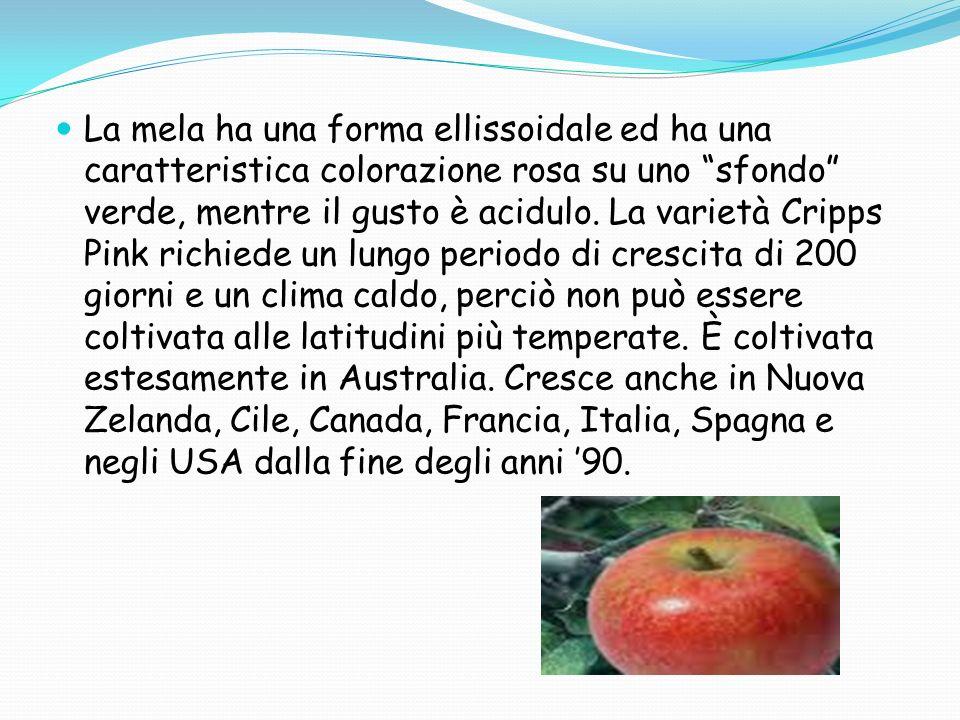 La mela ha una forma ellissoidale ed ha una caratteristica colorazione rosa su uno sfondo verde, mentre il gusto è acidulo.