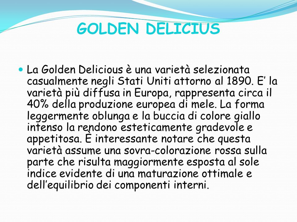 GOLDEN DELICIUS