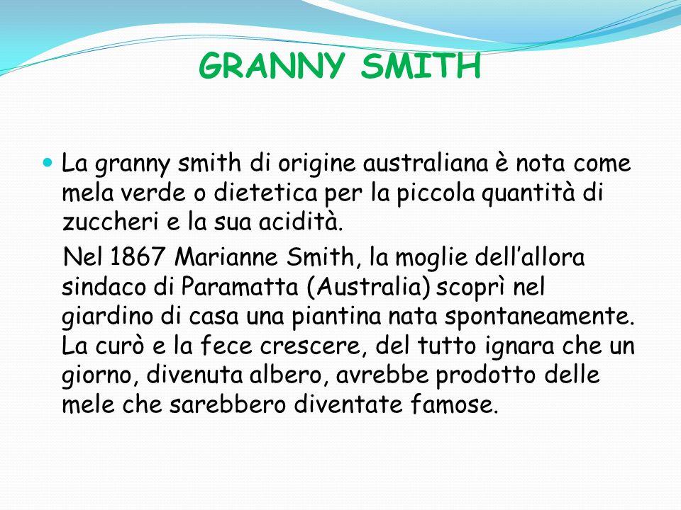 GRANNY SMITH La granny smith di origine australiana è nota come mela verde o dietetica per la piccola quantità di zuccheri e la sua acidità.