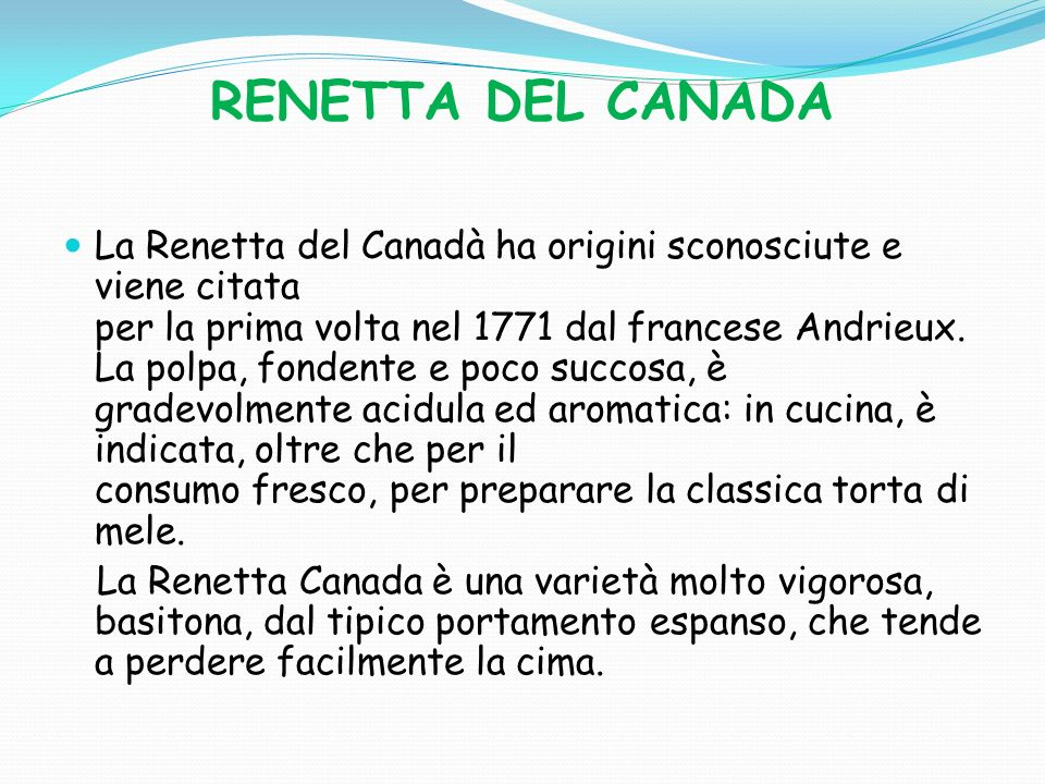 RENETTA DEL CANADA