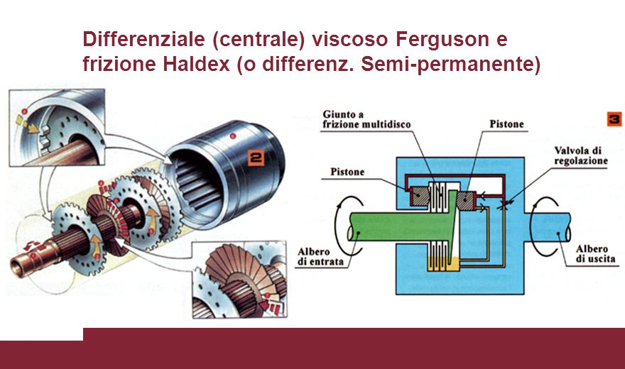 Differenziale (centrale) viscoso Ferguson e frizione Haldex (o differenz. Semi-permanente)