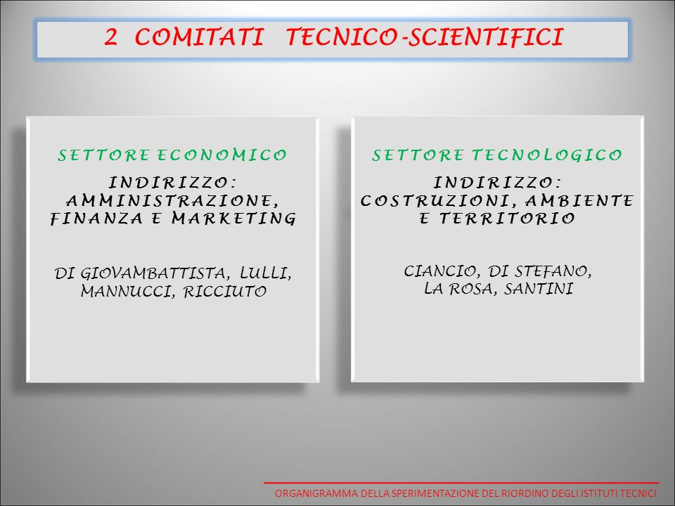 2 COMITATI TECNICO-SCIENTIFICI