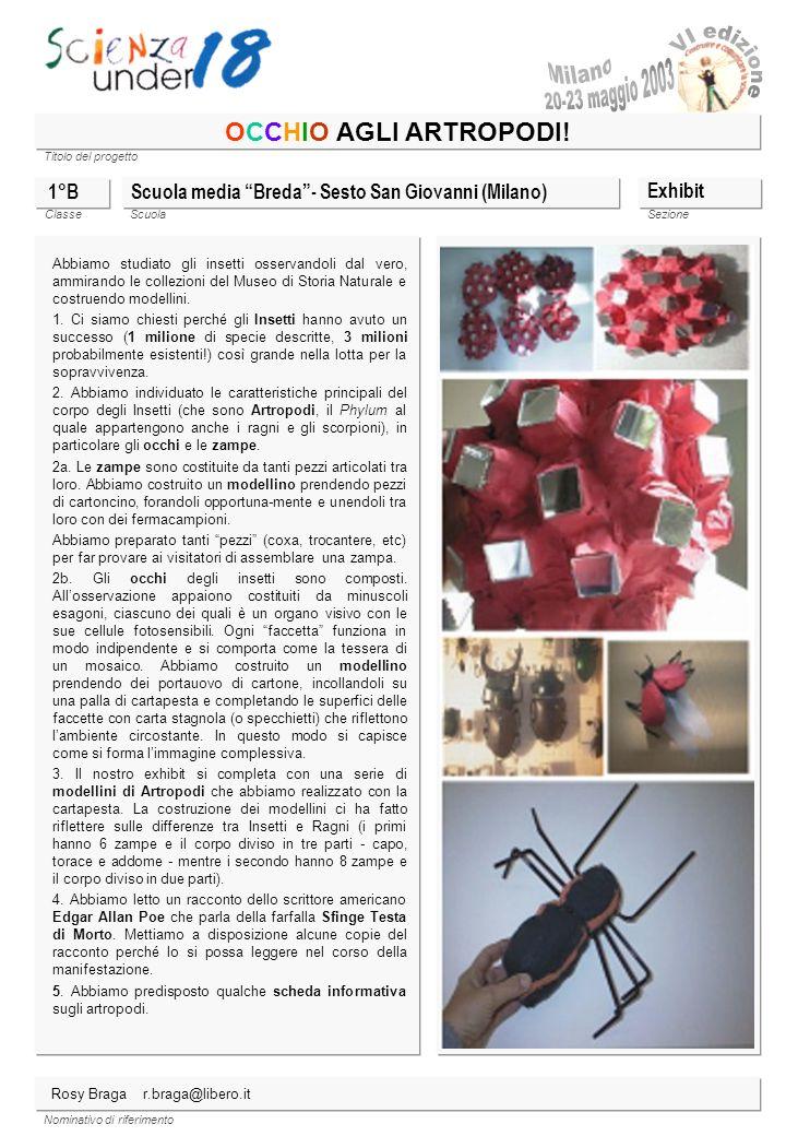 Milano OCCHIO AGLI ARTROPODI! 1°B