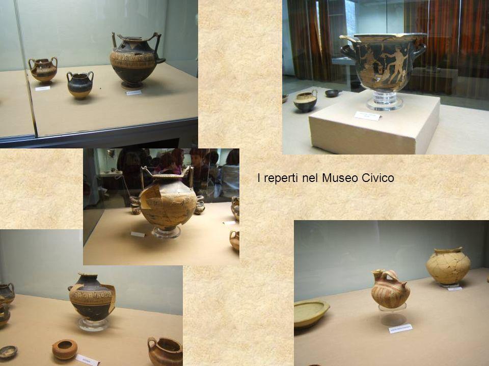 I reperti nel Museo Civico