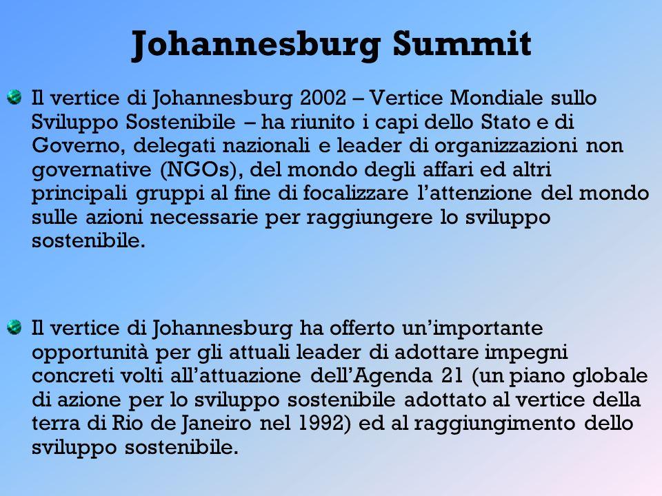 Johannesburg Summit