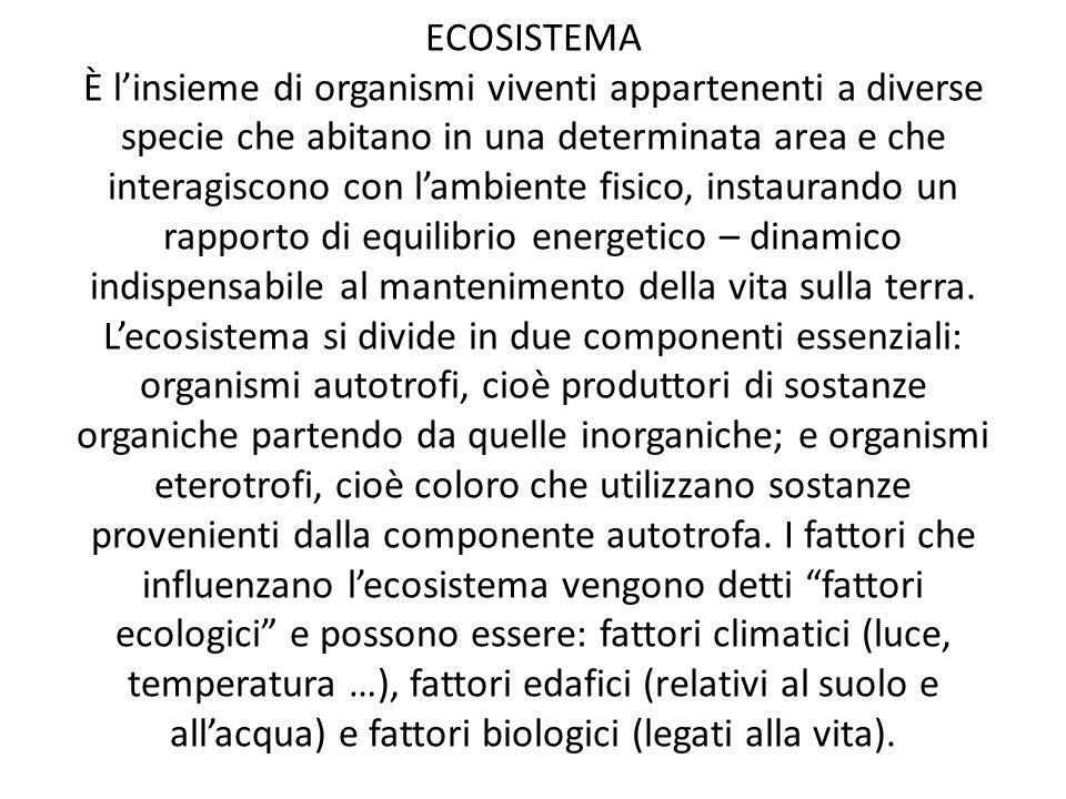 ECOSISTEMA Ѐ l'insieme di organismi viventi appartenenti a diverse specie che abitano in una determinata area e che interagiscono con l'ambiente fisico, instaurando un rapporto di equilibrio energetico – dinamico indispensabile al mantenimento della vita sulla terra.