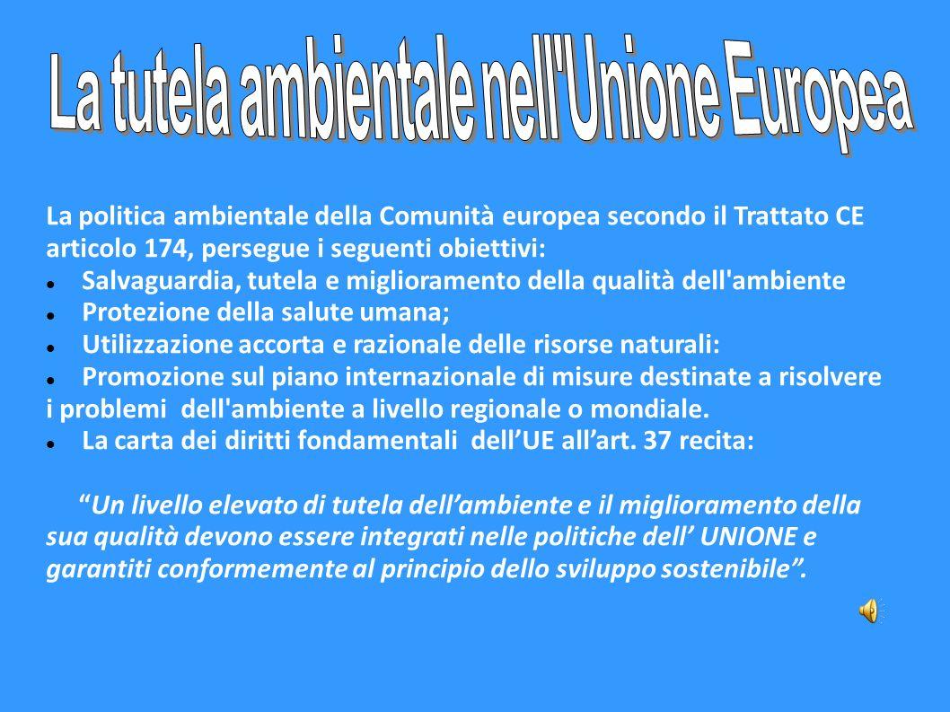 La tutela ambientale nell Unione Europea