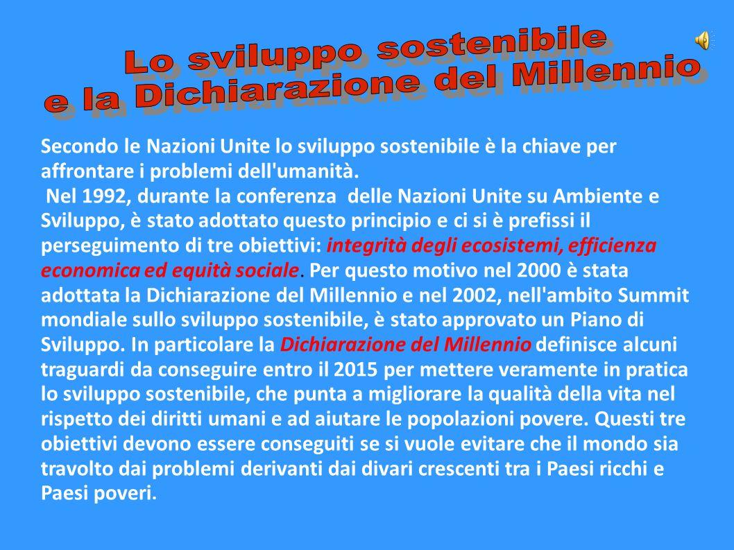 Lo sviluppo sostenibile e la Dichiarazione del Millennio