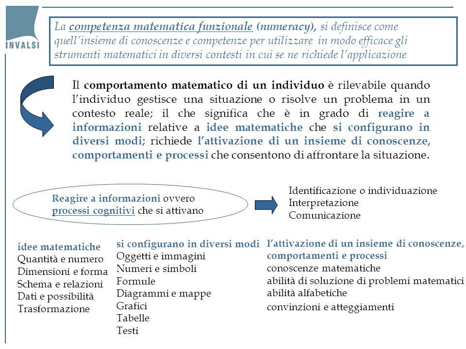 La competenza matematica funzionale (numeracy), si definisce come quell'insieme di conoscenze e competenze per utilizzare in modo efficace gli strumenti matematici in diversi contesti in cui se ne richiede l'applicazione